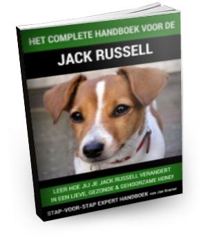 Jack Russell Trainingsboek